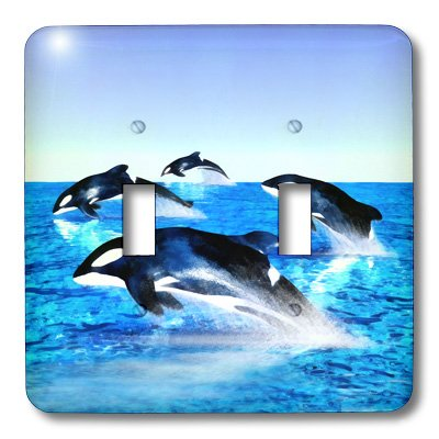 Killer Whale Light Switchplate (3dRose lsp_41472_2 Killer Whale Pod Double Toggle Switch)