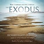 The Exodus | Richard Elliott Friedman