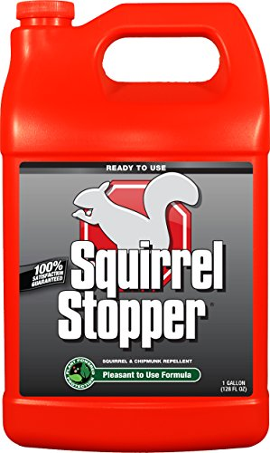 Messina Wildlife Squirrel Stopper with Refill, 1 Gallon (Animal Stopper)