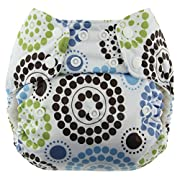 Blueberry One Size Simplex All In One Cloth Diapers, Made in USA (Roundabout)