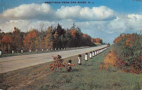 Oak Ridge New Jersey Scenic Roadway Greeting Vintage Postcard K670713