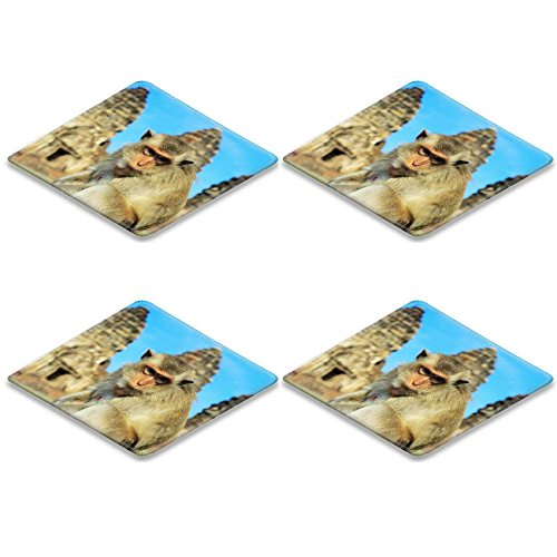 Coasters Closeup portrait of a monkey in front of Prang Sam Yot the Khmer temple in Lopburi IMAGE 19498730 by MSD Mat Customized Desktop Laptop Gaming Mouse Pad