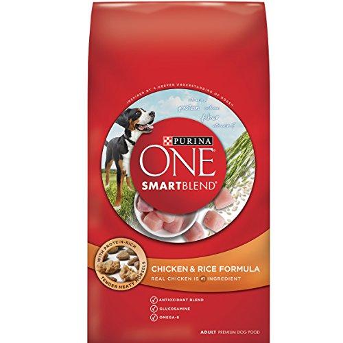 Purina ONE SmartBlend Dry Dog Food, Chicken & Rice Formula -