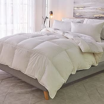 Image of 1221 Bedding Cotton Sateen Down Alternative Comforter Full - Queen Home and Kitchen