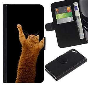 NEECELL GIFT forCITY // Billetera de cuero Caso Cubierta de protección Carcasa / Leather Wallet Case for Apple Iphone 5 / 5S // Gato anaranjado
