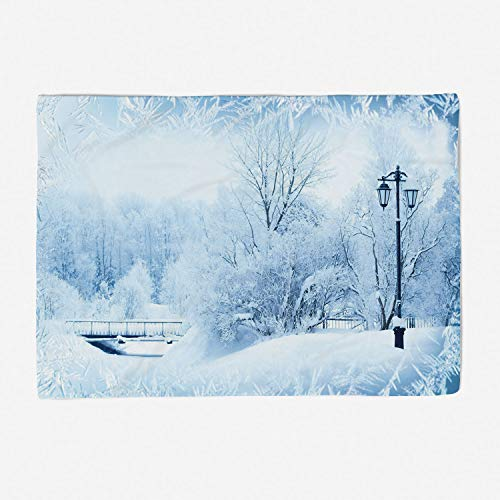 YOLIYANA Microfiber Throw Blanket Set/Perfect for Couch Sofa or Bed/78x49 inches/Winter,Winter Trees in Wonderland Theme Christmas New Year Scenery Freezing ICY Weather Decorative
