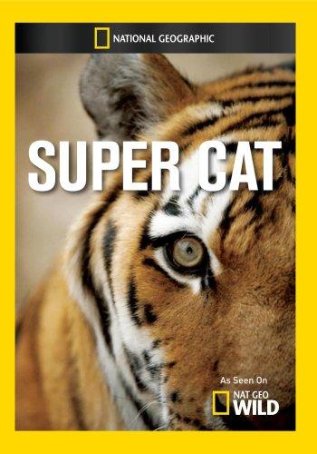 - Super Cat