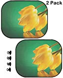 MSD Car Sun Shade Protector Side Window Block Damaging UV Rays Sunlight Heat for All Vehicles, 2 Pack Image ID 19331711 Three Fresh Yellow Tulips Leaning on a Mirror on a Green Background