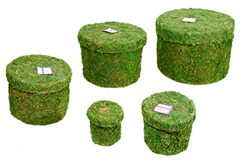 SuperMoss (55563) Hat Box - Round, Fresh Green, Set of 5 (Nested)