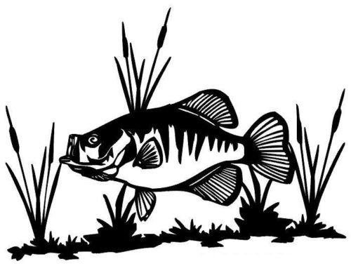 Crappie & Cattails Decal MD Fishing Boat/Truck Window Stickers, Die Cut Vinyl Decal For Windows, Cars, Trucks, Tool Boxes, Laptops, Macbook - Virtually any Hard, Smooth Surface, Black 6 (Crappie Decal)