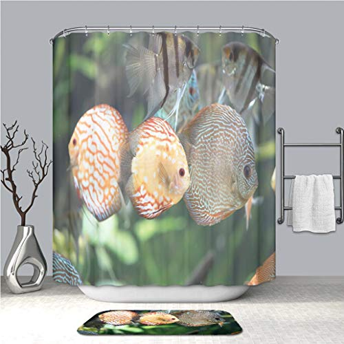 - BEICICI Shower Curtain and Bath mat Rug Pigeon Blood Discus Fish Symphysodon aequifasciatus Custom Stylish,Waterproof,Mildew Proof Bathroom Set