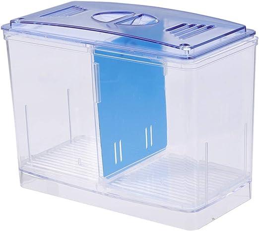 Popetpop - Caja para acuario y cultivo de peces, para el hogar (batería independiente): Amazon.es: Productos para mascotas