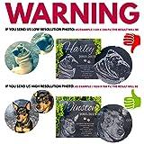 Pet Memorial Gifts, Personalized Dog Memorial Stone