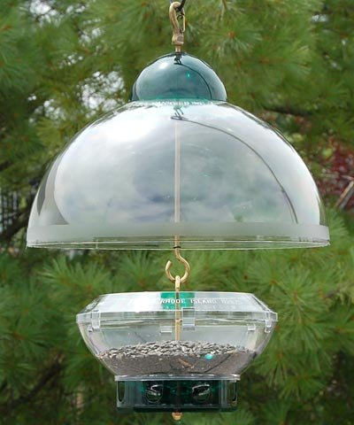 Droll Yankees DROBTG Bird Feeder, Hanging Feeder with Adjustable Dome Cover, 15 Inch Dome, 3 Pound Seed Capacity, 8 Ports, Green, ()