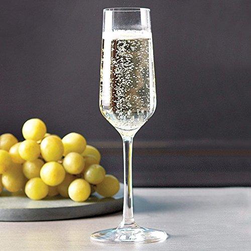 Stolzle Revolution Sparkling Flute Champagne Glasses, Set of (Revolution Flute)