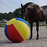 Jolly Mega Ball Beachball Cover