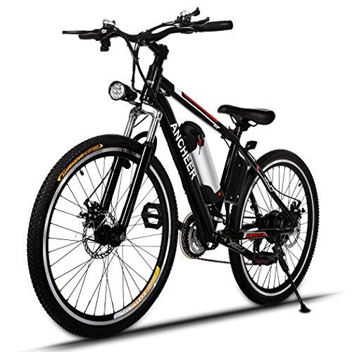 Bike Trailer Double Stroller Reviews - 5