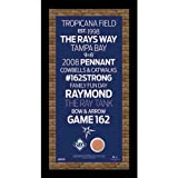 MLB Tampa Bay Rays Subway Sign Wall Art with Authentic Dirt from Tropicana Field, 9.5x19-Inch
