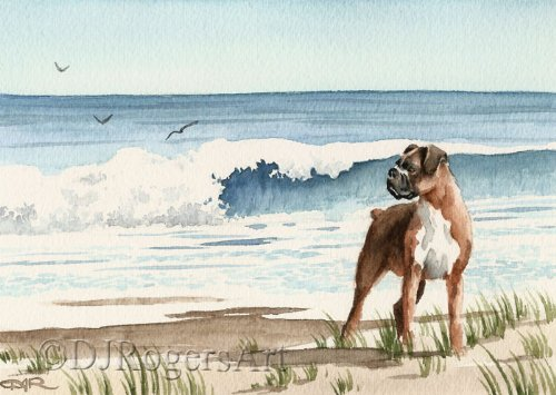 Boxer At The Beach Art Print by Watercolor Artist DJ Rogers ()