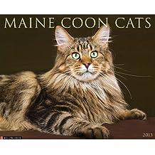 2013 Calendar Maine Coon Cats 2013 Wall Calendar