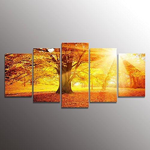 Formarkor Art Oil Painting Modern Art Large Canvas Wall Art 5 Piece Canvas Art Framed with Surrounded By Green Trees, the Recent Best-selling Products (Canvas Large Art Tree)