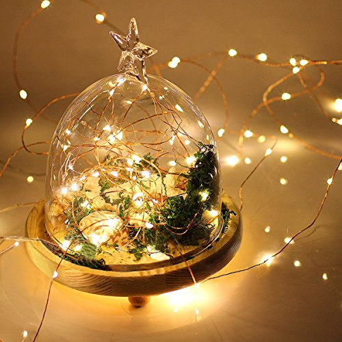 Eaagd 7ft 20 LED String Lights - Battery Powered Warm White Decorative Indoor LED Starry Light with Copper Wire for Christmas Wedding Party 1-pack 7ft