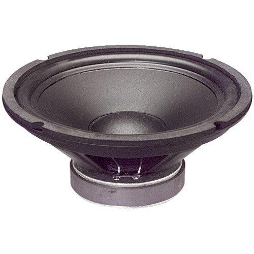 "Goldwood Sound GW-1038 Rubber Surround 10"" Woofer 250 Watts 8ohm Replacement Speaker"