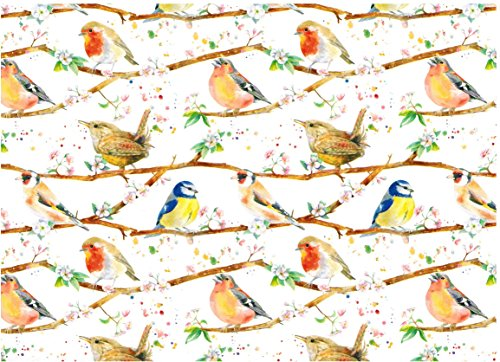 (British Garden Birds Gift Wrap Paper 2 Sheets 19.5 in x 27.5 in)