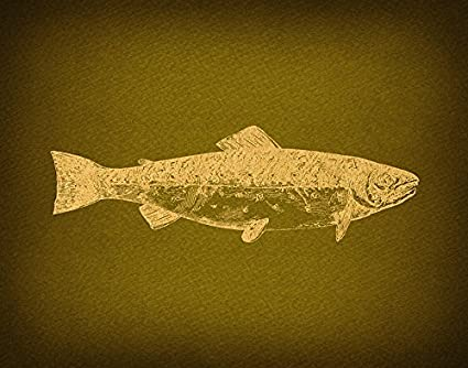 Amazon.com: Vintage Trout Fish Wall Art Print for Classic Home ...