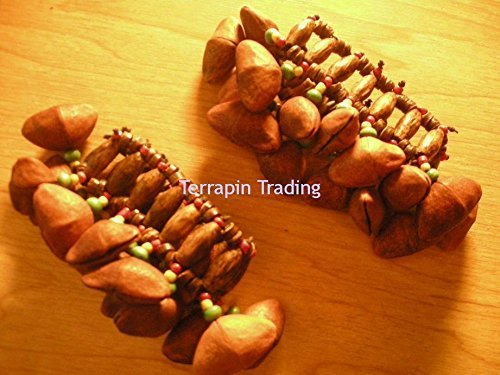 fair-trade-amazonian-shaman-calabash-foot-leg-rattle-made-from-tapar-tree-nuts