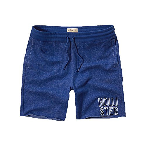 hollister-mens-fleece-shorts-l-blue-788
