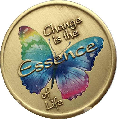 Change is The Essence of Life Color Rainbow Butterfly Serenity Prayer Medallion Chip