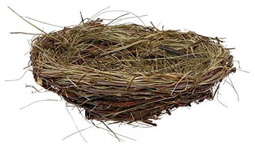 Birds Nest - 9