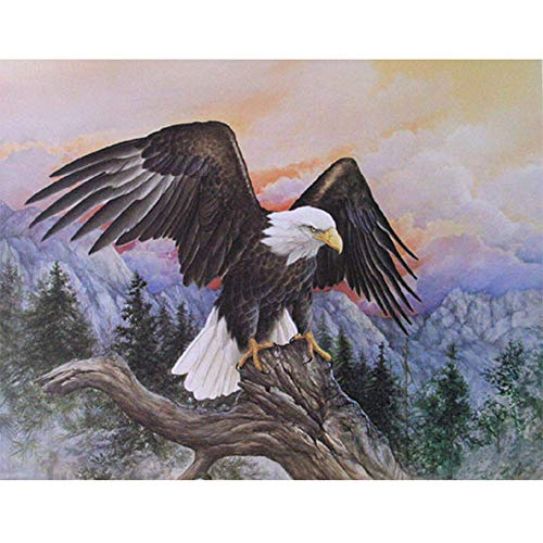 Moohue Needlework 14CT Counted Cross Stitch Kits Flying Eagle DMC Thread Wall Room Decor Handmade Gifts (Flying Eagle)