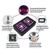 Cree COB LED Grow Light, Growstar 600W Reflector