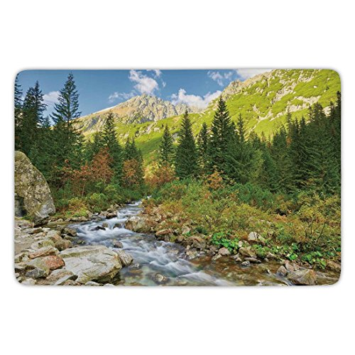 Bathroom Bath Rug Kitchen Floor Mat Carpet,Outdoor,Roztoka Stream Tatra National Park Carpathian Mountains Poland Woods,Green Light Green Tan,Flannel Microfiber Non-slip Soft (Tatra Sink)