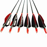 MS Jumpper Archery Carbon Arrows, High Percentage Carbon-Fiber Arrow Spine 400 with 4'' Real Feathers 100 Grain Points for Hunting/Targeting Compound/Recurve/Long Bow 6Pack (31inch)