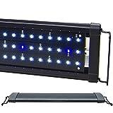 Beamswork LED 1W HI Lumen Aquarium Light Marine FOWLR Cichlid (DHL 48) by BeamsWork
