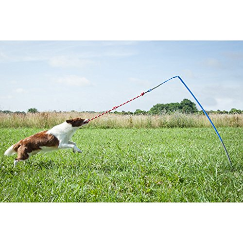 Tether Tug Interactive Dog Toy, Outdoor, X-Large