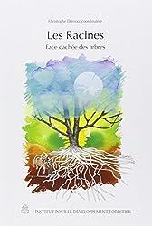 Les racines : Face cachée des arbres