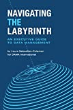 img - for Navigating the Labyrinth: An Executive Guide to Data Management book / textbook / text book