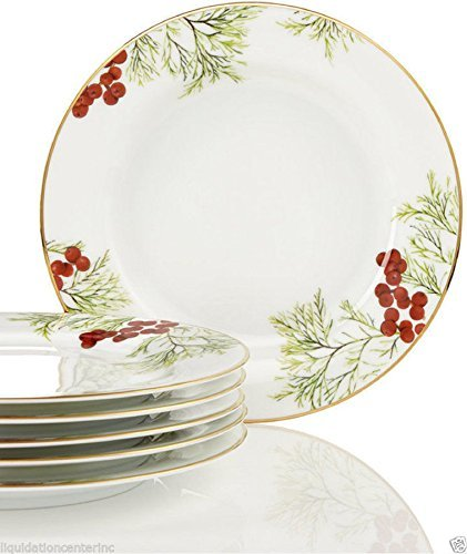 Charter Club Red Berry Set of 6 Salad Plates