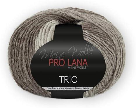 """Résultat de recherche d'images pour """"pro lana trio farbe 85"""""""