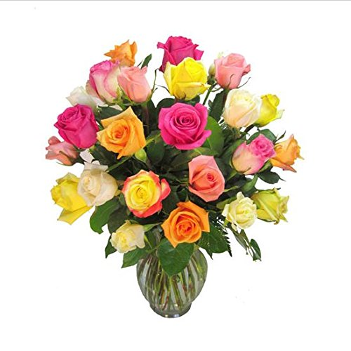 Farm Direct Rose Bouquet of 12 Fresh Cut Roses with Vase (Rainbow)