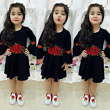 Mericiny Little Girl Baby Long Sleeve Embroidery Flower Dress Knee High One Piece Party Dress