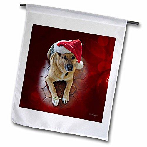 3dRose Sandy Mertens Christmas Animals - Santa Hat on a German Shepherd Dog with a Candy Cane - 12 x 18 inch Garden Flag (fl_269513_1)