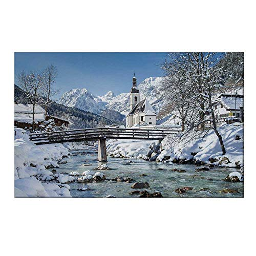 YOLIYANA Winter Durable Door Mat,Panoramic View of Scenic Landscape in Bavaria Parish European Scenic Places Decorative for Home Office,19.6