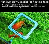 FLOURITHING 2 Pcs Fish Feeding Ring, Fish Safe