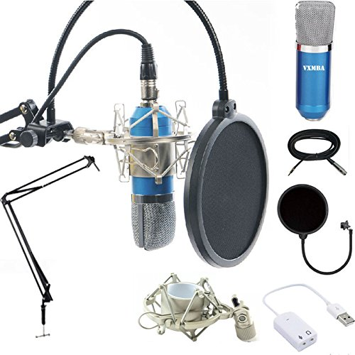Professional Condenser Microphones +Power Supply Cables stand suit+3.5mm Male to XLR Female Cable+Ball-type Foam Cap +Metal Shock Mount +Table Mounting Clamp+Pop Filter
