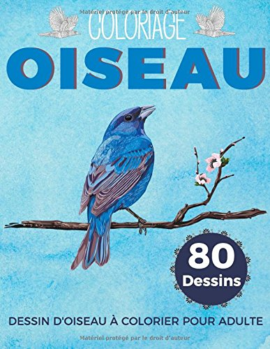 Coloriage Oiseau Dessin D Oiseau à Colorier Pour Adulte